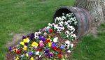 Фото красивых клумб – Цветочная клумба — стильный и красивый дизайн клумбы на участке (115 фото)