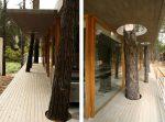 Дом с деревьями – 17 домов, доказывающих что не обязательно рубить деревья, чтобы что-нибудь построить